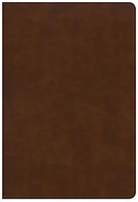 KJV Large Print Ultrathin Reference Bible, British Tan (Imitation Leather)