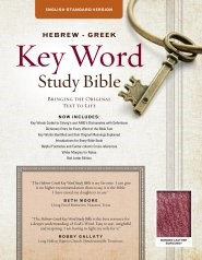 The ESV Hebrew-Greek Key Word Study Bible Burgundy (Bonded Leather)