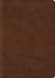 ESV Archaeology Study Bible (TruTone, Brown) (Imitation Leather)