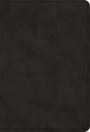 ESV Value Large Print Compact Bible (TruTone, Black) (Leather Binding)