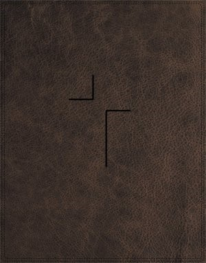 NIV Jesus Bible (Leather Binding)