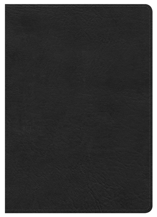 HCSB Large Print Compact Bible, Black Leathertouch