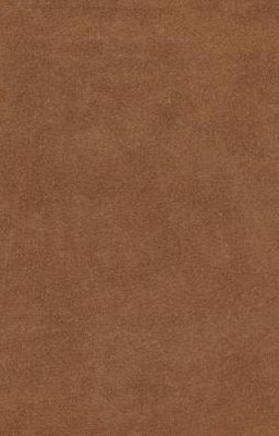 Esv Holy Bible, Value Edition (Brown) (Imitation Leather)