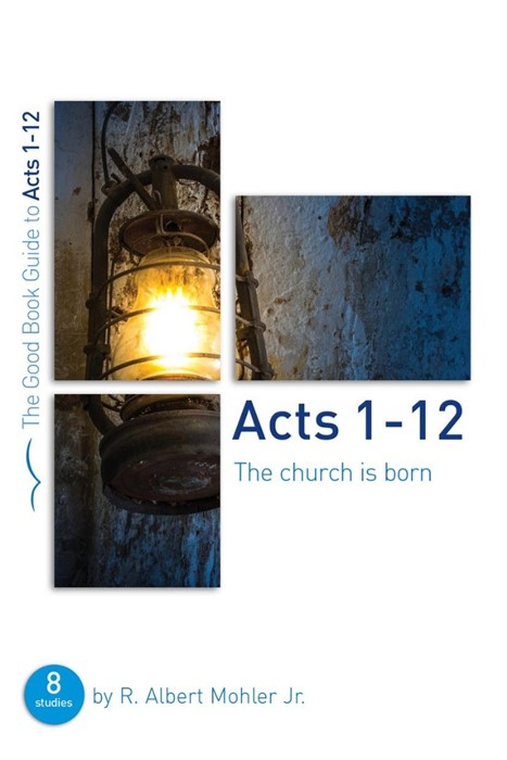 Acts 1-12: The Church Is Born (Paperback)