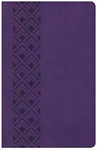 CSB Ultrathin Reference Bible, Value Edition, Purple Leather (Imitation Leather)