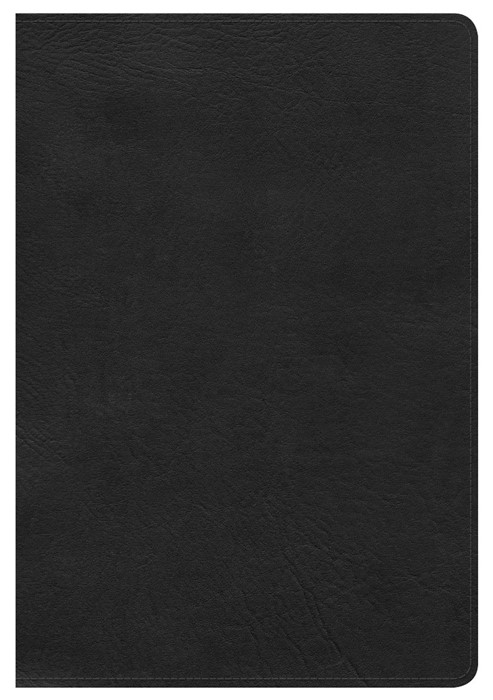 HCSB Large Print Ultrathin Reference Bible, Black (Imitation Leather)