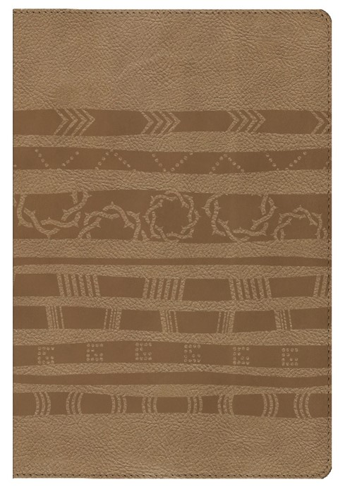HCSB Essential Teen Study Bible, Personal Size, Aztec (Imitation Leather)