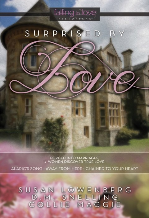 Surprised By Love (Paperback)