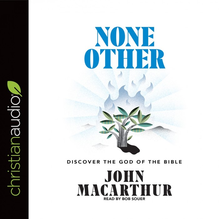 None Other: Audio Book (CD- Audio)