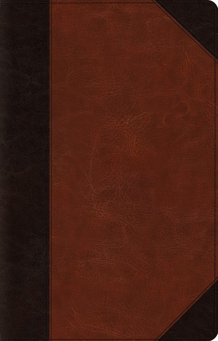 ESV Large Print Thinline Reference Bible (TruTone, Brown/Cor (Leather Binding)