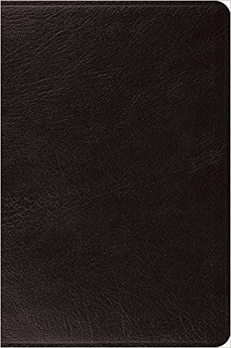 ESV Large Print Bible (Black) (Leather Binding)