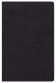HCSB Ultrathin Reference Bible, Black Leathertouch, Indexed (Imitation Leather)