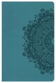 HCSB Ultrathin Reference Bible, Teal Leathertouch, Indexed (Imitation Leather)