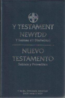 Beibl Cymraeg Newydd/Spanish DHH NT Psalms Proverbs Diglot (Flexiback)