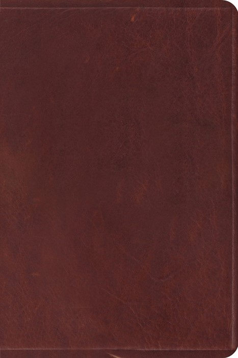 Esv Study Bible, Personal Size (Leather Binding)