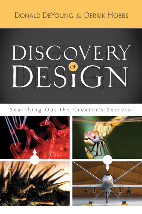Discovery Of Design (Paperback)