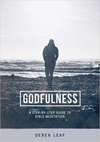 Goodfulness (Paper Back)