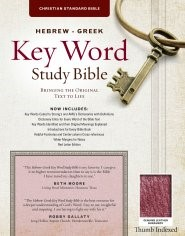The CSB Hebrew-Greek Key Word Study Bible Burgundy (Genuine Leather)