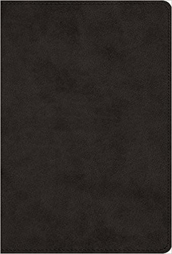 The Greek New Testament, Produced at Tyndale House, Cambridg (Leather Binding)