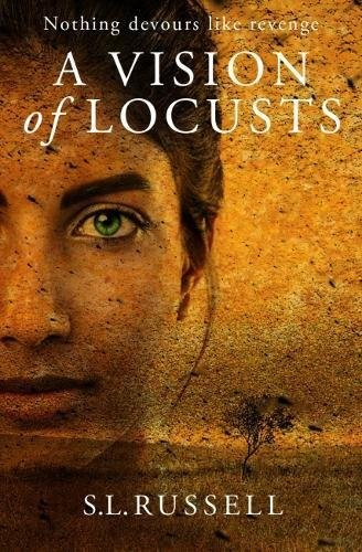 Vision Of Locusts, A (Paperback)