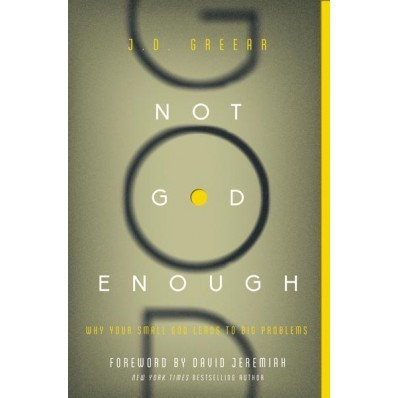 Not God Enough (Paperback)