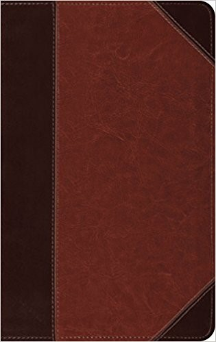 ESV Thinline Reference Bible TruTone, Brown/Cordovan (Imitation Leather)