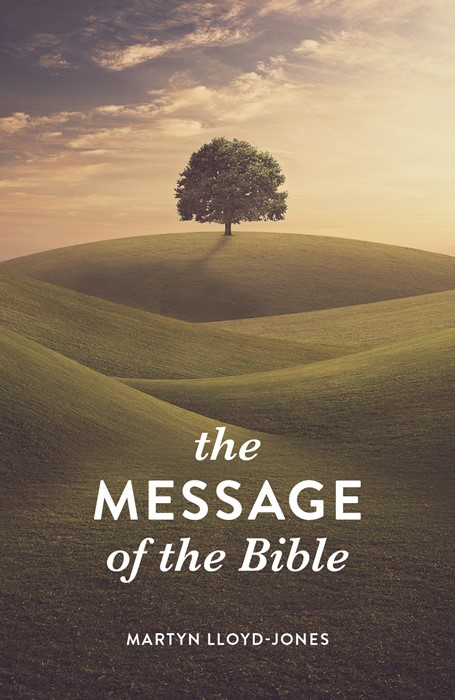 The Message of the Bible (Pack of 25) (Pamphlet)