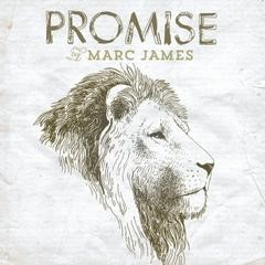 Promise CD (CD- Audio)