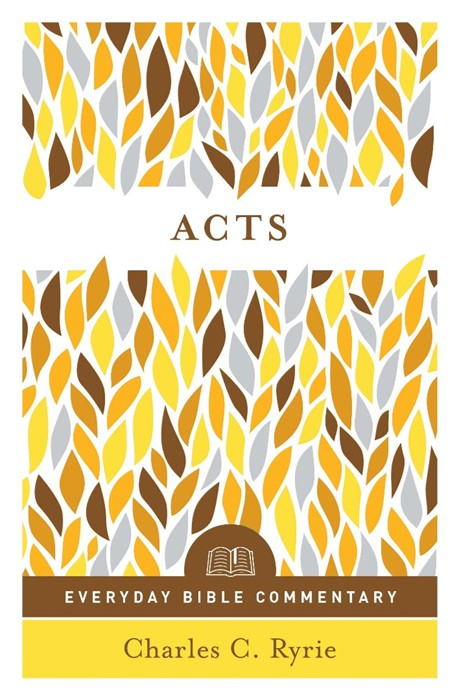 Acts (Everyday Bible Commentary Series) (Paperback)