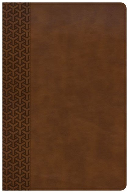 KJV Everyday Study Bible, British Tan LeatherTouch (Imitation Leather)