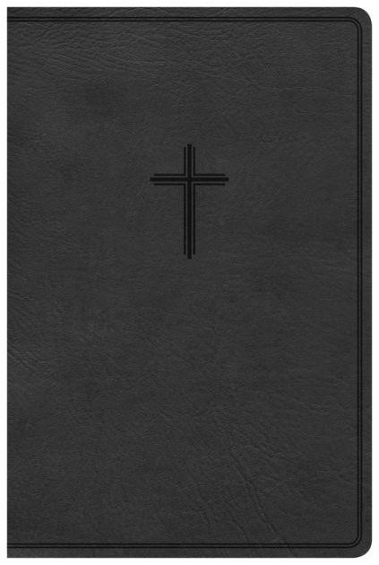 KJV Everyday Study Bible, Charcoal LeatherTouch (Imitation Leather)