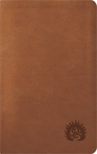 ESV Reformation Study Bible, Condensed Edition, Light Brown (Imitation Leather)