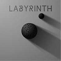 Labyrinth CD (CD- Audio)