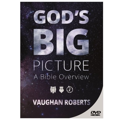 God's Big Picture DVD (DVD)