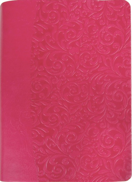 Everyday Life Amplified Bible, Pink (Bonded Leather)