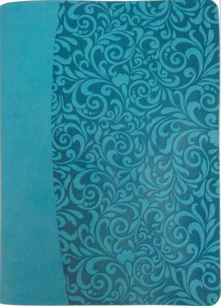 Everyday Life Amplified Bible, Turquoise (Imitation Leather)