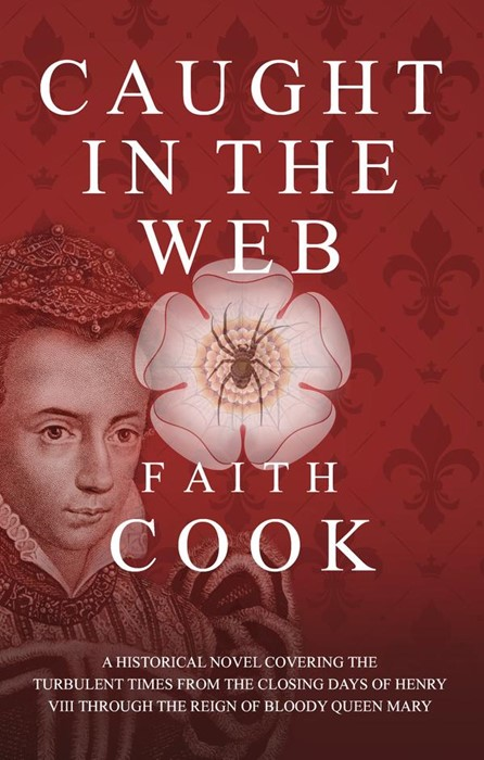 Caught In The Web (Paperback)