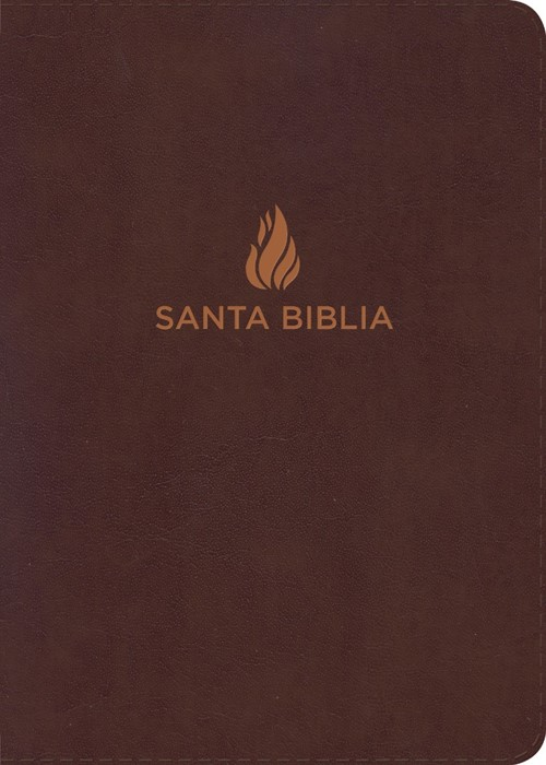 NVI Biblia Letra Grande Tamaño Manual, marrón piel fabricada (Bonded Leather)