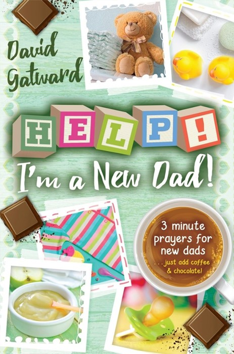 Help! I'm A New Dad! (Paperback)
