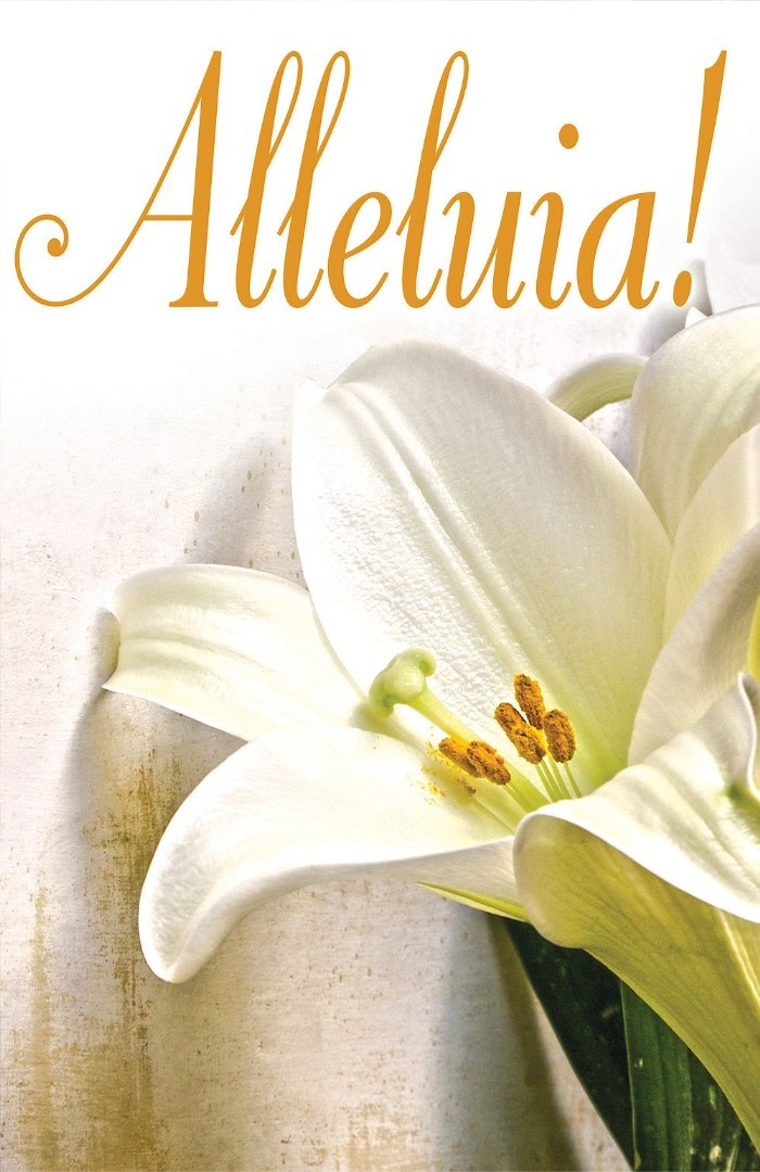 Alleluia! Easter Lilies Bulletin (Pkg of 50)