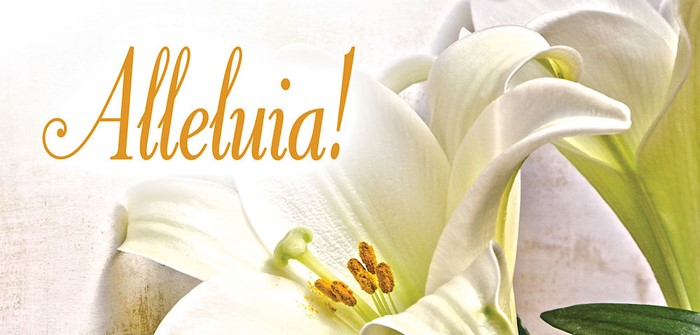 Alleluia! Easter Lilies Offering Envelope (Pkg of 50)