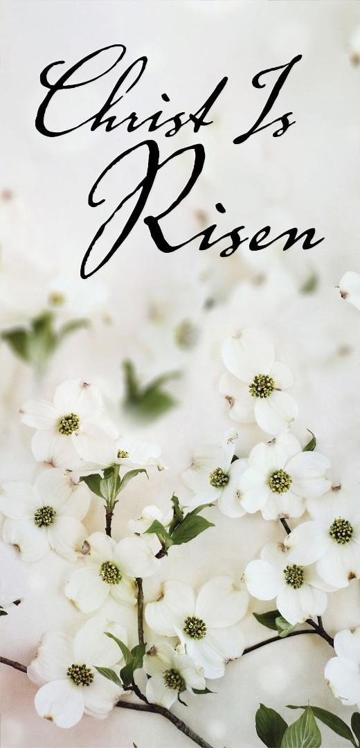 Christ Is Risen Dogwood Easter Offering Envelope (Pkg of 50)