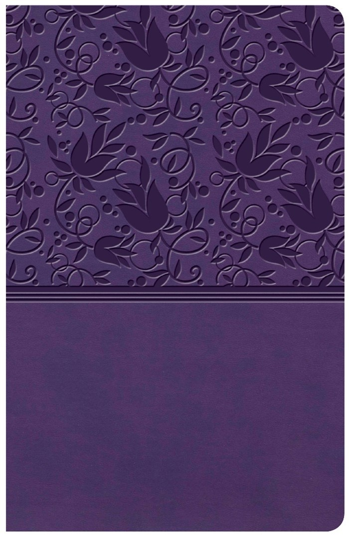 KJV Large Print Personal Size Reference Bible, Purple