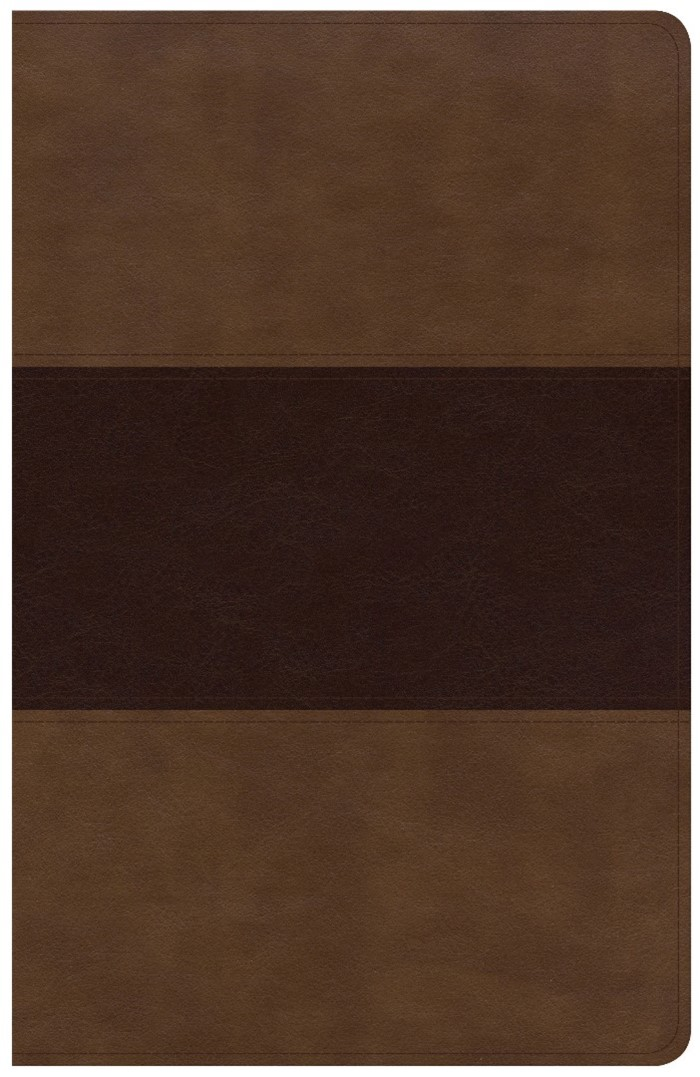 KJV Large Print Personal Size Reference Bible, Saddle Brown