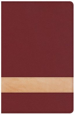 CSB Large Print Personal Size Reference Bible, Crimson/Tan