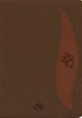 ESV Fire Bible Student Edition, Brown