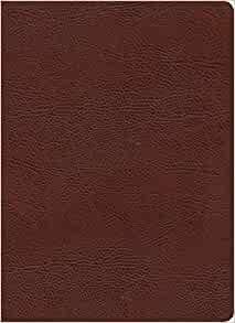 KJV Study Bible, Full-Color, Brown Bonded Leather