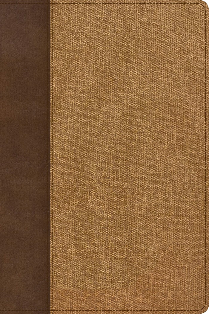 KJV Rainbow Study Bible, Brown/Tan LeatherTouch