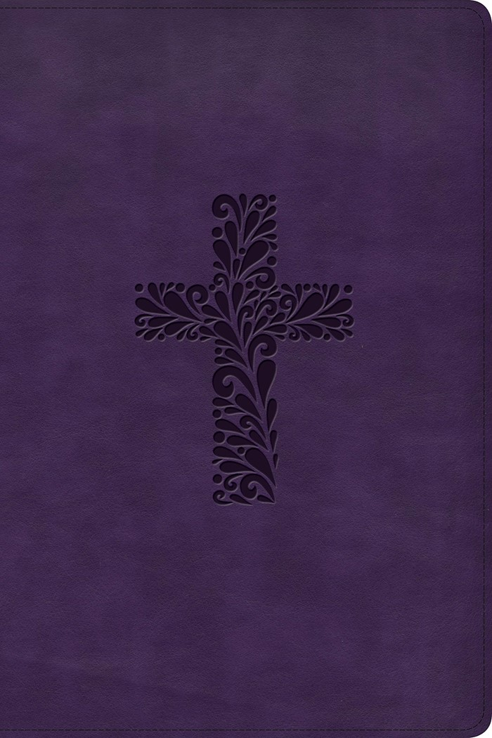 KJV Rainbow Study Bible, Purple LeatherTouch