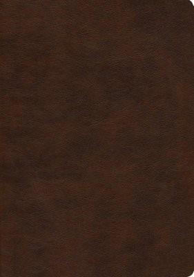 NASB 2020 Large Print Ultrathin Reference Bible, Brown